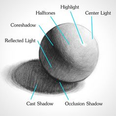 Drawing Elements of Light on Form - Shading