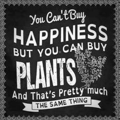 Plants = Happiness