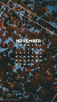 2017_November7M.jpg 1,080×1,920 pixels