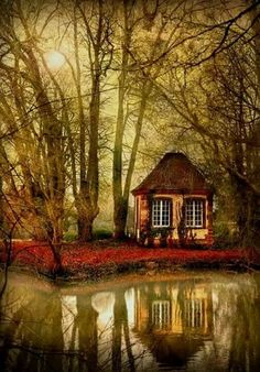 Cabin in an Enchanted Wood
