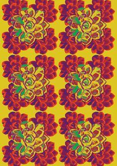 Rosas Amarelas da Frida