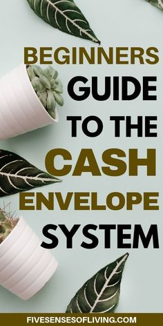 I can't tell you how helpful learning the cash envelope system has been. - Different Ideas Envelope Budget System, Cash Envelope System, Budget Envelopes, Cash Envelopes, Budgeting System, Budgeting Money, Cash Wallet, Making A Budget, Dave Ramsey