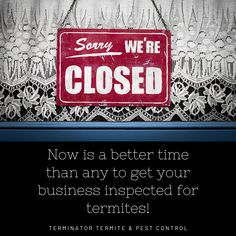 Keeping Termites Out Of Your Business - Terminator Termite & Pest Control Termite Pest Control, Termite Inspection, You Got This, How To Get, Learning, Business, Blog, Blogging, Store