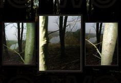 ein triptychon