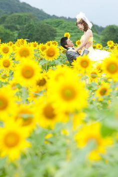 結婚式場写真「ひまわり畑でロケ撮影!! 真夏の眩しい日差しにも負けないお二人の笑顔満開!!」 【みんなのウェディング】