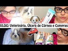 Vlog: Consulta Veterinária, Shih Tzu Com Úlcera de Córnea, Comprinhas Pe...