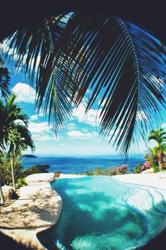 poolside #Beachwear #LadyLuxSwimwear #LuxurySwimwear #bikinis