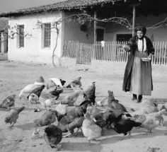 Tloupas.gr - Greece History, Greece Pictures, Greece Photography, Black And White Aesthetic, Athens Greece, Vintage Pictures, Farm Life, Old Photos, The Past