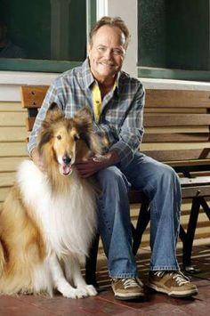Jon Provost and Lassie Rough Collie, Collie Dog, Jon Provost, Elvis And Priscilla, Star Show, Old Shows, Great Tv Shows, Old Tv, Classic Tv