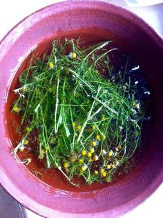 Fresh chamomile infusion for your skin