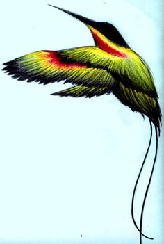 Jamaican Tattoos, Birds 2, Image Types, Colorful Drawings, Google Images, Animals, Beautiful, Hummingbirds, Cool