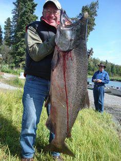 King salmon caught in the Kenai river. http://letscatchreelbigfish.blogspot.com