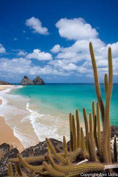 Praia do Bode, Fernando de Noronha, Pernambuco