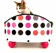 Pet Bed Neon Pink Set. Build it the way you like it with many options.
