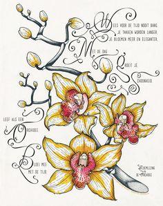 Gedicht : Bloemlezing Orchidee