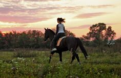 horse and owner photography - Google Search