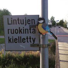 Bird hama perler street art by variterapia