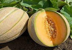 Dit zijn de gezonde voordelen van meloenzaden (dus gebruik ze!)