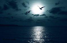 Blue Sunset by Eduardo Muriedas