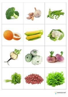 Print out and practice vegetable names - memory matching game or flash cards… Vegetable Crafts, Food Pyramid, Stories For Kids, Kids Education, Fruits And Vegetables, Pre School, Preschool Activities, Kids And Parenting, Teaching Kids