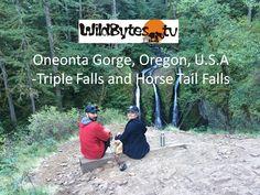 Oneonta Gorge, Oregon, U.S.A-Triple Falls and Horsetail Falls