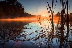 Photo Morning fog by Benjamin Ngoma on 500px