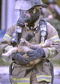 This Fireman saved this Cat from a Burning House and was caught on film carrying the Kitty out in his arms. Kindness and tenderness as in the picture.