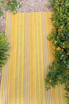 "Dash and Albert Rugs- ""Sunflower Ticking"" Woven Cotton Rug- Available @ Maryland Paint & Decorating Woven Cotton, Cotton Rugs, Little Miss Sunshine, Dash And Albert, Ticks, Wilder House, Burlap, Kitchen Runner, Basement Ideas"
