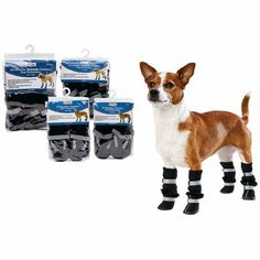 Petco Brand All-Weather and All-Weather Extreme Outdoor Paw Protection for Dogs #UNLstyle #pintowin #theadventurer