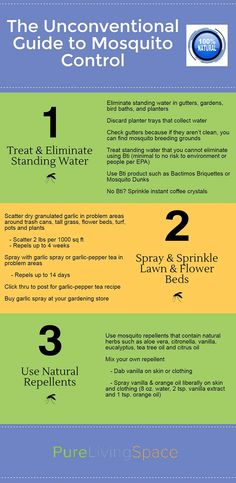 The best all natural ways to get rid of mosquitoes without harmful chemicals. Learn these safe ways to live with fewer pests. Click to read more or pin to save for later.
