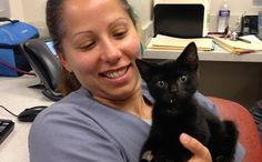 Hero Veterinarian Saves Beaten, Strangled Kitten Injected With Heroin