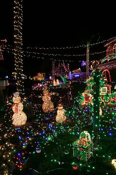 some of san diegos best christmas light displays - Best Christmas Lights In San Diego