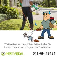 Best Pest Control Services now available at nominal rates.  Call Now- 011-69418484  Visit- http://www.pestveda.com  #pestcure #pestcontrol