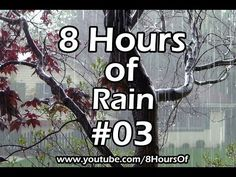 8 Hours of relaxing morning rain. If you listen to this during sleep or meditation you will feel peaceful and calm. Great for tinnitus, meditation, yoga, when you study, go to sleep, have insomnia or have sleep deprivation.  Please like, subscribe and comment if you enjoyed this video. It will really help me out a lot. :)  http://www.youtube.com/subscription_center?add_user=8hoursof
