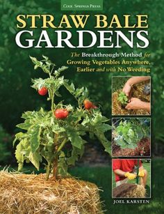 You'll find a bumper crop of vegetable gardening books on the shelves today, but it is a very rare title that actually contains new information.  ...