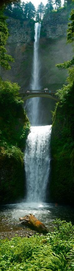 Multnomah Falls, Oregon, USA. I would love to stand on the bridge! http://gotomarketstrategy.org/?+=pinterest #multnomahfalls #oregon