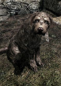 """This Story About Adopting A Dog In """"Skyrim"""" Is Properly Hilarious"""