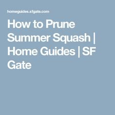 How to Prune Summer Squash | Home Guides | SF Gate