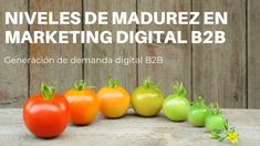 ¿Cuál es tu nivel de madurez de marketing digital B2B? Lean Startup, Marketing Digital, Awesome, Amazing, Accenture Digital, Product Development, Maturity