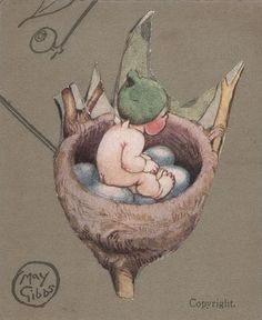 """Gumnut Baby"" In Bird's Nest. Another of May Gibbs' gorgeous pictures of Australian 'pixie' people. I am so glad I have found them. Fairy Land, Fairy Tales, Bebe Nature, Kids Story Books, Australian Artists, Children's Book Illustration, Childrens Books, Images, Drawings"