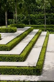 contemporary landscaping - box heges, rectangles, no curves - Google Search