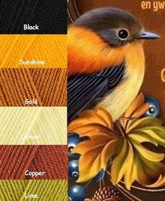 Yarn Color Combinations, Color Schemes Colour Palettes, Colour Pallette, Color Palate, Color Blending, Color Mixing, Color Harmony, Color Studies, Color Swatches