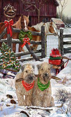 Soft Coated Wheaten Terrier - Welcoming Committee -  by Margaret Sweeney