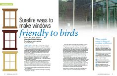15 products that help birds avoid your windows