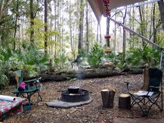 Best tent camping near Tampa florida. Camp