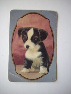 One Single Vintage SWAP CARD  Exclusive Coles Production  B&W Puppy No name or # sold $6.50