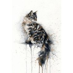 Art- cats other animals