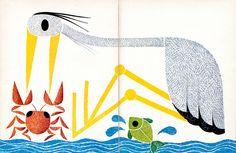 Attilio - L'airone, i pesci e il gambero