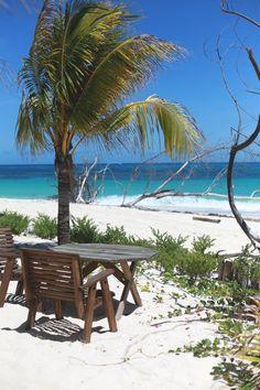 Denis Island, Seychelles. #cihthoney