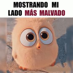 Mostrando Mi Lado Malo - Gif - ­New Multimedia Humor Grafico, Stickers Online, Funny Cute, Cute Cartoon, Animated Gif, Owl, Animation, Animals, Fictional Characters